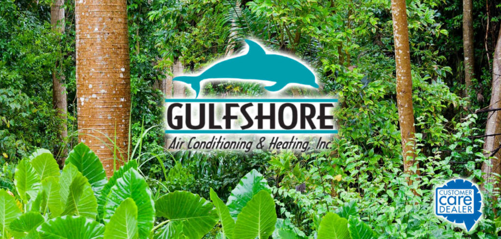 Humidity Control Northwest Florida Gulfshore Air