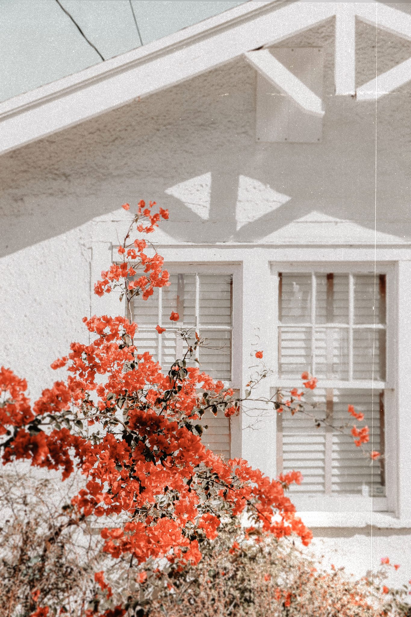 Spring Cleaning: Keeping Allergens Out of Your Home This Spring
