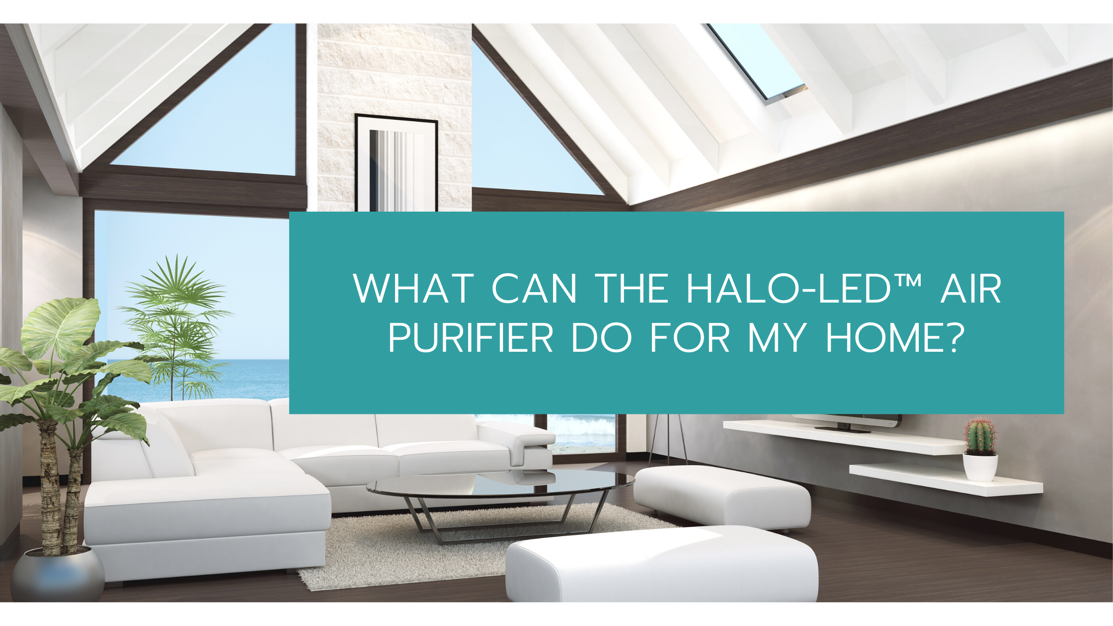 HALO-LED™ Air Purifier